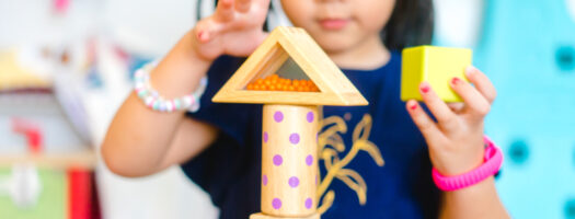 20 Best Toys for 5-Year-Old Girls 2021
